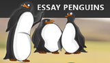 Content essaypenguins